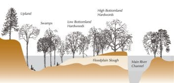 Floodplain Chart
