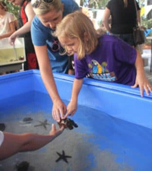 Kid Petting Starfish