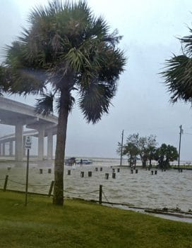 Rising waters in Apalachicola