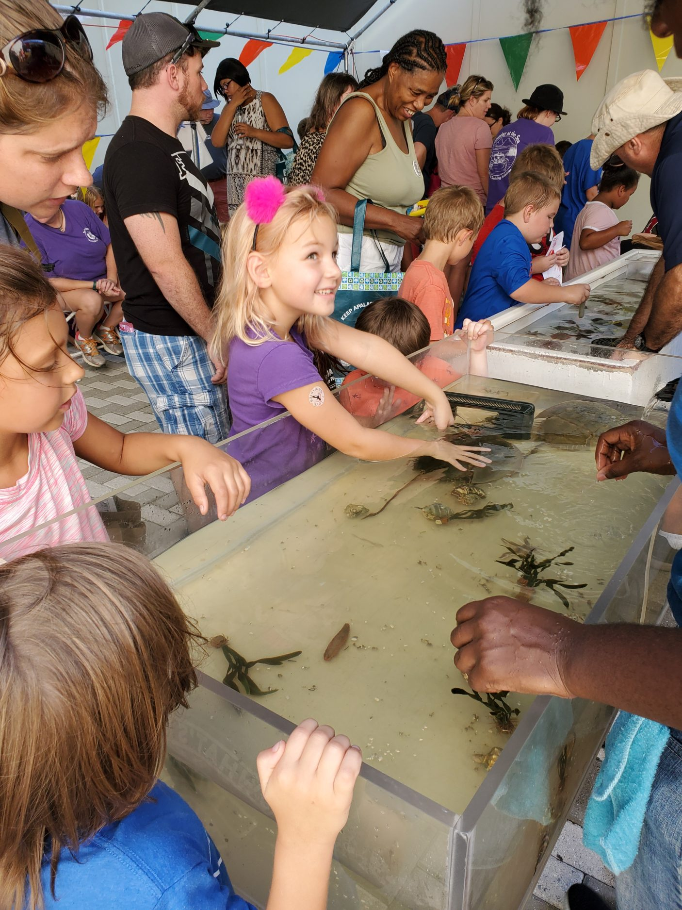 This year's Estuaries Day attracted nearly 1200 visitors, with activities organized to support awareness and understanding of estuaries